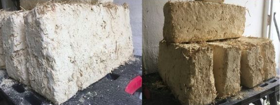 Cob bricks